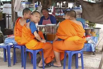 Gần một nửa sư Thái Lan béo phì - 2