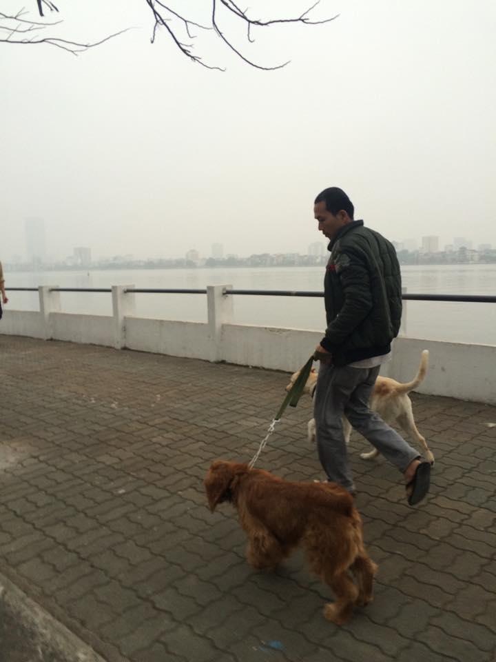 """Chó dữ """"ngông nghênh"""" đi lại khắp Thủ đô - 5"""