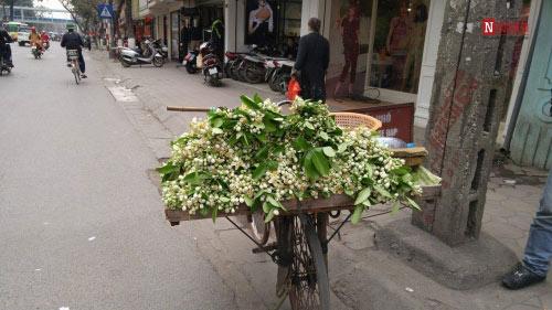Hà Nội tháng 3- thành phố mùa hoa đẹp nhất miền Bắc - 4