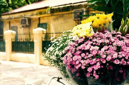 Hà Nội tháng 3- thành phố mùa hoa đẹp nhất miền Bắc - 14