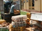 """Thị trường - Tiêu dùng - Lo gà thải, thịt """"rác""""… Trung Quốc tràn vào Việt Nam"""
