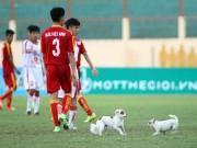 Bóng đá - Một cầu thủ U19 bị chó cắn giữa trận