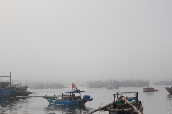 Đà Nẵng bỗng dưng chìm trong sương mù - 4