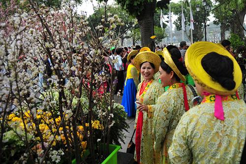 Ngắm hoa anh đào Nhật Bản khoe sắc giữa Thủ đô - 12