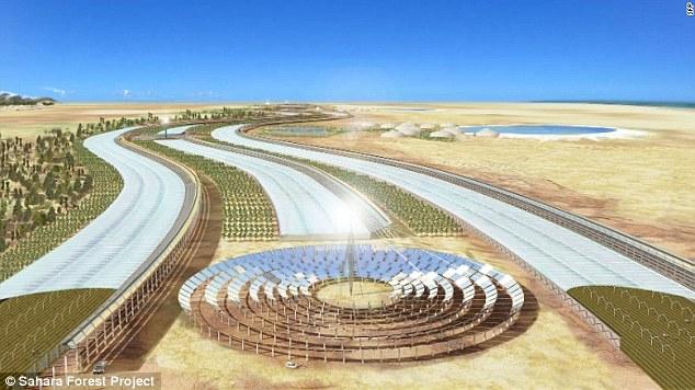 """Bắt sa mạc Sahara """"đẻ"""" ra rau xanh, nước sạch quanh năm - 1"""