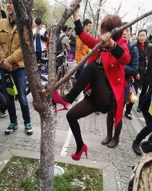Thiếu nữ TQ mặc váy ngắn leo cây chụp ảnh gây phẫn nộ - 3