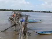 Du lịch - Về sông Cửa Lớn cùng ngư dân đóng đáy