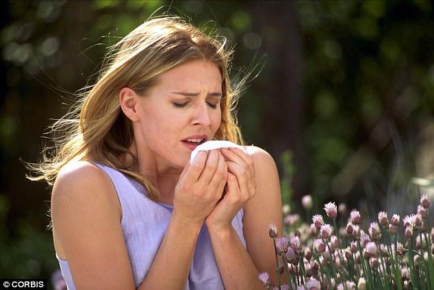 Hít phấn hoa làm tăng nguy cơ đau tim lên cao bất ngờ - 1