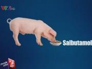Sức khỏe đời sống - Salbutamol có thể gây ung thư nếu tích lũy nhiều trong cơ thể