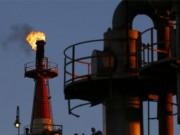 Thị trường - Tiêu dùng - Giá dầu giảm gần một nửa so với dự toán