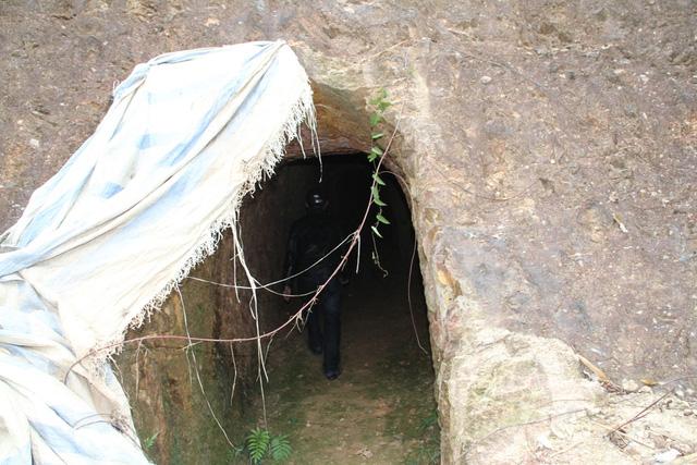 Mục sở thị nơi bí thư huyện đào núi làm... hầm rượu - 4