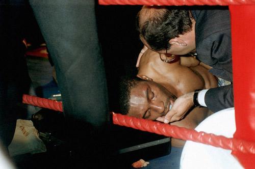 """Boxing: Cha xin con đừng """"phế võ công"""" đối thủ - 5"""