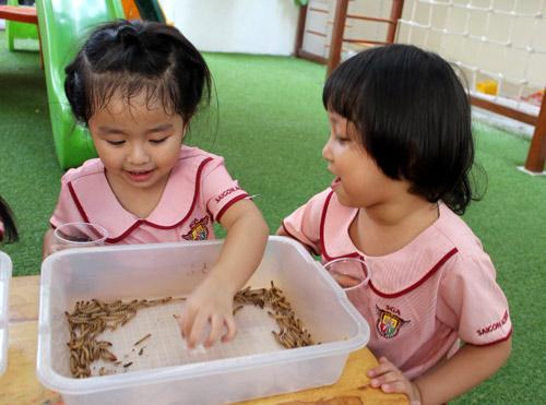 Giáo dục sớm cho trẻ nên bắt đầu như thế nào? - 1