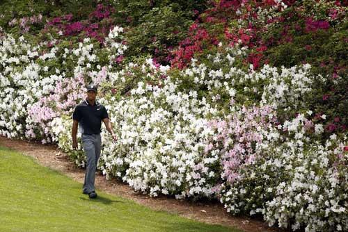 Golf 24/7: Tân số 1 thế giới suýt bỏ nghiệp 5 năm trước - 2