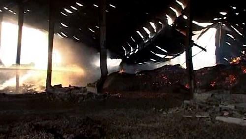 Bộ Công an vào cuộc điều tra vụ kho mì cháy suốt 7 ngày - 8