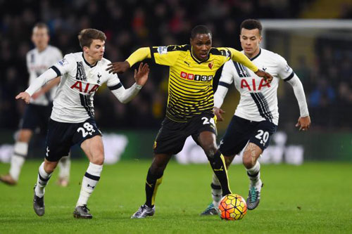 Watford – Tottenham: Giữ lửa, giữ tham vọng tốp 4 - 1