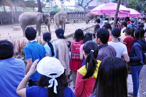 Ngày đầu năm, nhiều điểm vui chơi ở Sài Gòn quá tải - 4
