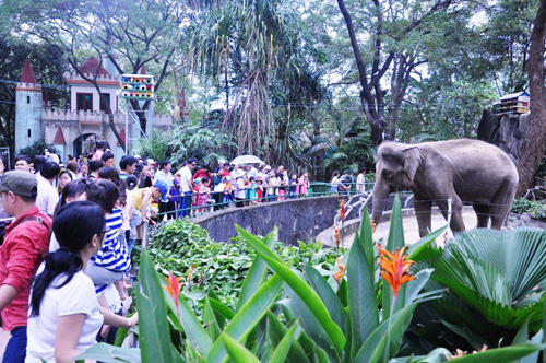 Ngày đầu năm, nhiều điểm vui chơi ở Sài Gòn quá tải - 5