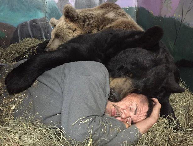Cặp đôi Mỹ sống hạnh phúc cùng gấu nặng hơn 6 tạ - 6
