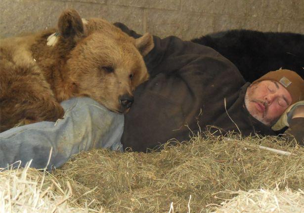 Cặp đôi Mỹ sống hạnh phúc cùng gấu nặng hơn 6 tạ - 5