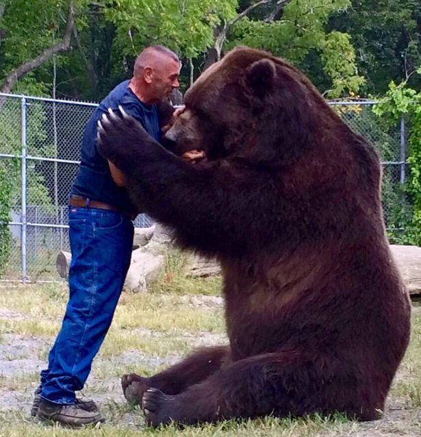 Cặp đôi Mỹ sống hạnh phúc cùng gấu nặng hơn 6 tạ - 7