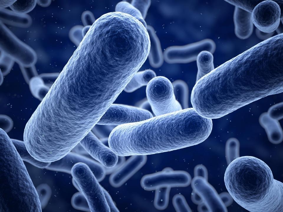 """Nhà khoa học Nga tiêm vi khuẩn cổ đại để trở nên """"bất tử"""" - 2"""