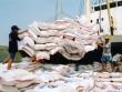 Bộ Công Thương mở cửa cho doanh nghiệp xuất khẩu gạo