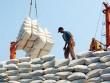 """Kinh doanh xuất khẩu gạo được """"cởi trói"""""""