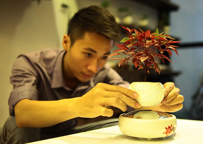 Săn bonsai bay, xoay tròn trên không trung chơi Tết - 2
