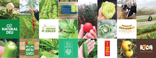 10 năm xây dựng thương hiệu nông sản VN với bữa ăn từ nông trại sạch - 3