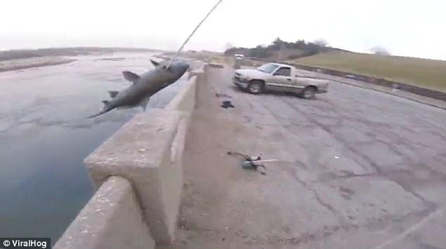 Không tưởng: Bắn cung tên cách xa 15m để bắt cá hồi - 2
