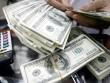 Tỷ giá USD tại các ngân hàng tiếp tục lao dốc mạnh
