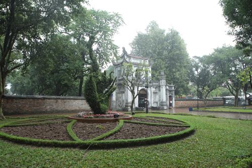 Cận cảnh cặp rồng kết từ cây xanh ở Văn Miếu - Quốc Tử Giám - 5