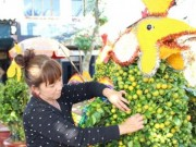 Thị trường - Tiêu dùng - Hoa Tết đồng bằng sông Cửu Long: Được giá vẫn không vui
