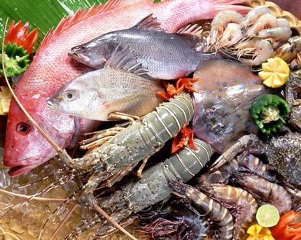 Thủy hải sản tồn dư hóa chất: Châu Âu trả về, không cách gì loại bỏ được - 1