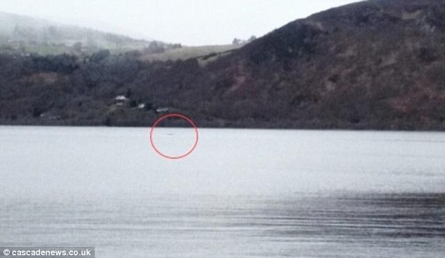 7 ảnh năm 2016 chứng minh quái vật hồ Loch Ness có thật - 7