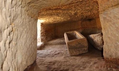 Phát hiện cá sấu không đầu trong mộ cổ Ai Cập 3.400 năm - 1
