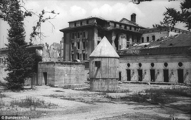 Điệp viên CIA tung bằng chứng Hitler bay tới Nam Mỹ trốn - 3
