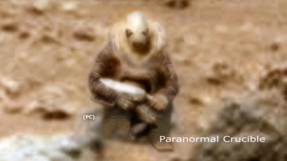 """Phát hiện """"chiến binh ngoài hành tinh"""" đóng băng trên Sao Hỏa - 2"""