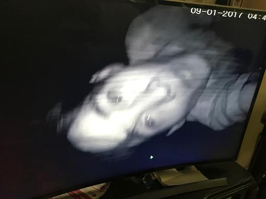 """Trộm đột nhập nhà không được, ăn cắp luôn """"mắt thần"""" - 1"""
