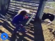"""Video Clip Cười - Clip hài: Đừng bao giờ """"đùa"""" với động vật"""