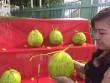 """Trái cây tạo hình """"độc"""" ra chợ tết Sài Gòn"""