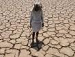 2016 chính thức là năm nóng nhất lịch sử