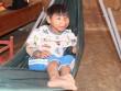 Tìm nguyên nhân bệnh đầu nhỏ tại Đắk Lắk