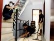 Dịch vụ dọn nhà Tết Đinh Dậu: Giá cao vút vẫn hút khách