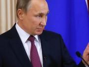 Thế giới - Nga dự kiến thời gian cho cuộc gặp Putin-Trump