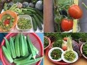 Mê mẩn vườn rau đón Tết 150m2 ở Malaysia của mẹ Việt