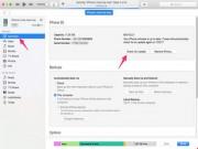 Công nghệ thông tin - Cài đặt ngay iOS 10.2.1 nếu không muốn iPhone bị đơ