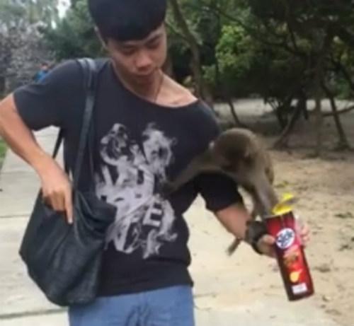 Công Phượng ám ảnh năm khỉ, mong đổi vận năm gà - 1