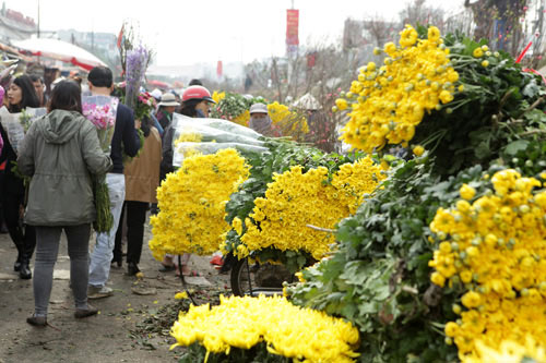 30 Tết, chen chân ở chợ hoa lớn nhất Hà Nội - 4